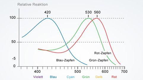 Spektrale Empfindlichkeit der drei Zapfen-Typen