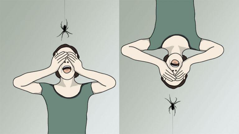 Das Fürchten lernen