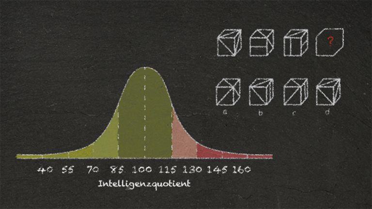 Intelligenz in Zahlen