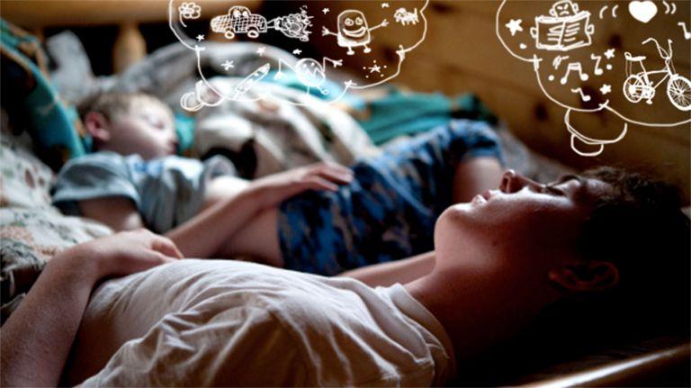 Schlaf und Traum im Überblick
