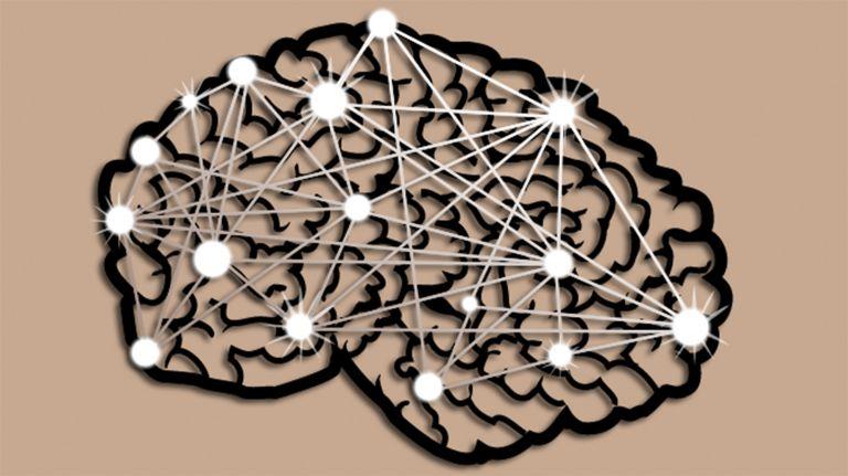 Neurobiologie und Empathie