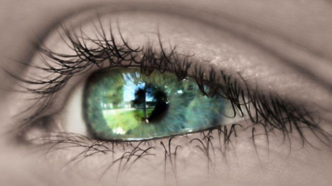 Sehen – (k)ein selbstverständliches Wunder